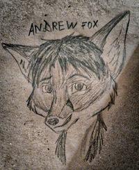 Andrew Fox