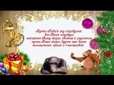 Веселое видео поздравление с новым годом 2016. Годом Обезьяны!