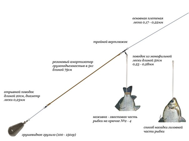 Энциклопедия рыбалки: