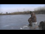 Зимняя рыбалка в Волгоградской области 07.03.2015