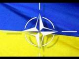 Украину ждут в НАТО?