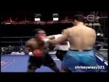 Mike Tyson Knockouts Collection – Спорт – OXO.uz - Первый мультимедийный пор