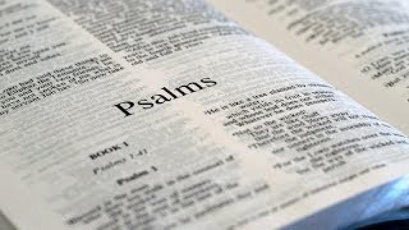 Библия. Книга Псалмов (с 1 по 49)