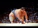 Борьба сумо. Питание сумо . Тренеровки сумо