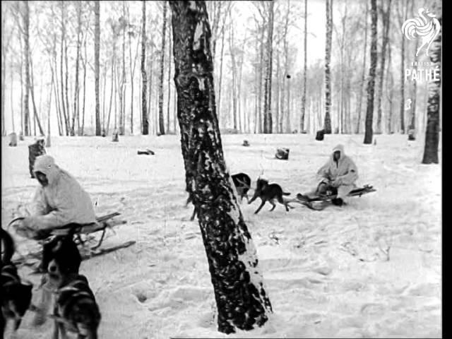 Russian Ski Troops (1940-1949)