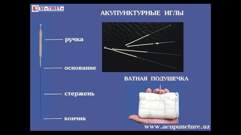 Методические основы акупунктуры Часть 2. www.acupuncture.uz