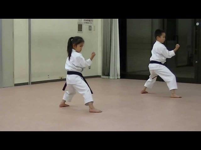 JKA Mahiro Masaki practice Heian shodan-godan and Tekki shodan part 2