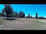 Tom Lure Coursing 2