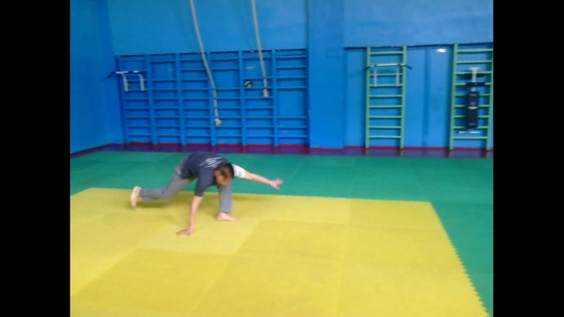 Crina RDA Capoeira
