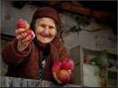 Доброта это классика люди Ирина Самарина Лабиринт