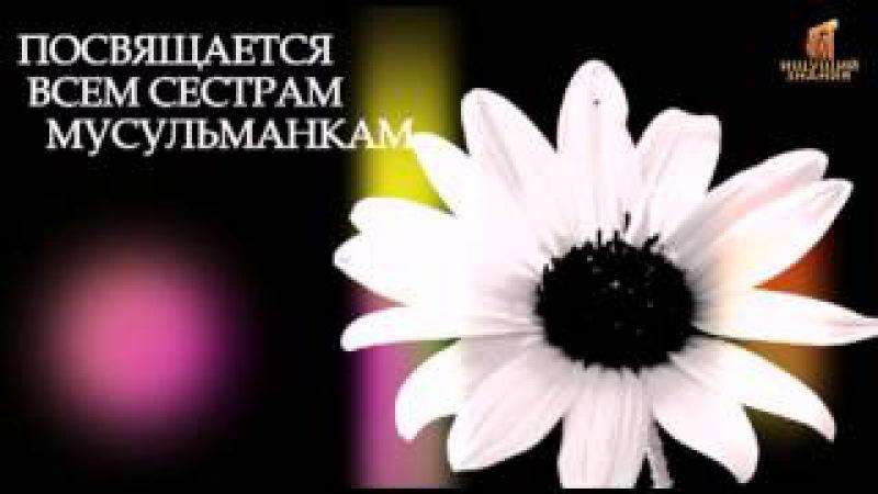 О свободе мусульманок [Taalib.ru]