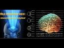 Психотронное оружие Мозг под прицелом