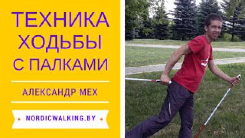 Техника скандинавской ходьбы. Полный урок по скандинавской ходьбе для новичков.