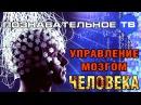 Управление мозгом человека Познавательное ТВ Сергей Савельев