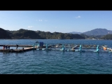 Dolphin Base, Taiji, Japan