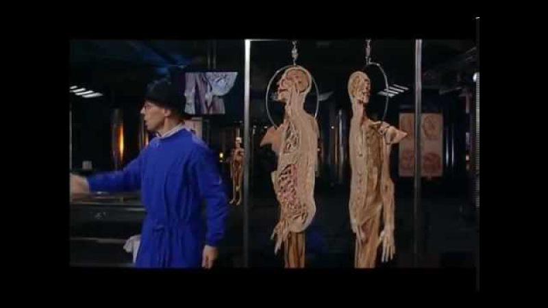 Разрезание вагины видео