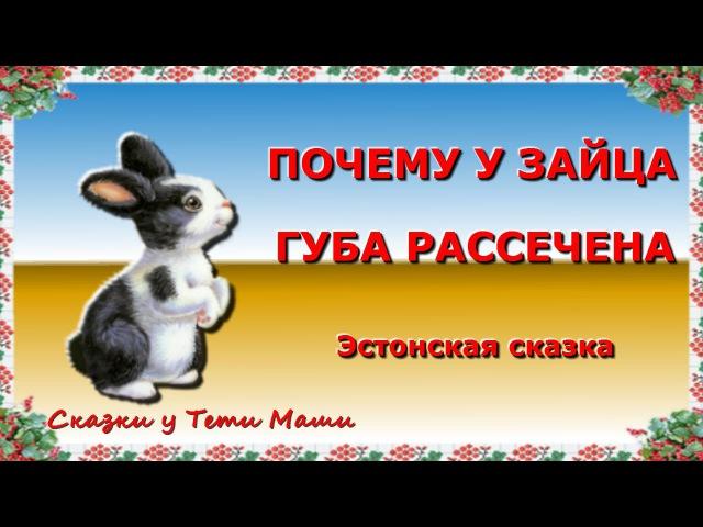 Почему у Зайца губа рассечена Эстонская сказка Сказки для детей читает Тетя Маша