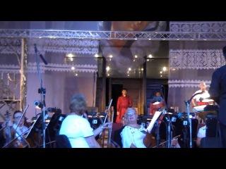 Тарас Бульба Харьков 22 08 2014 open air часть 2