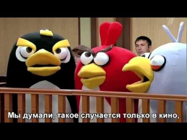 Angry Birds в Большой разнице
