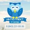 IT школа-лагерь «Интеллект» | Татарстан
