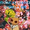 Подслушано школа №110 Новокузнецк