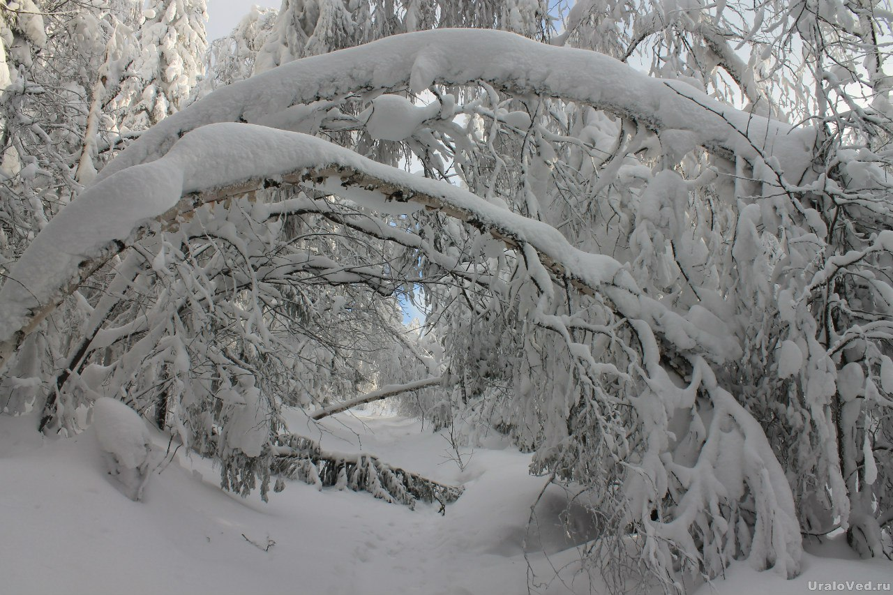 Дорога на Колпаки