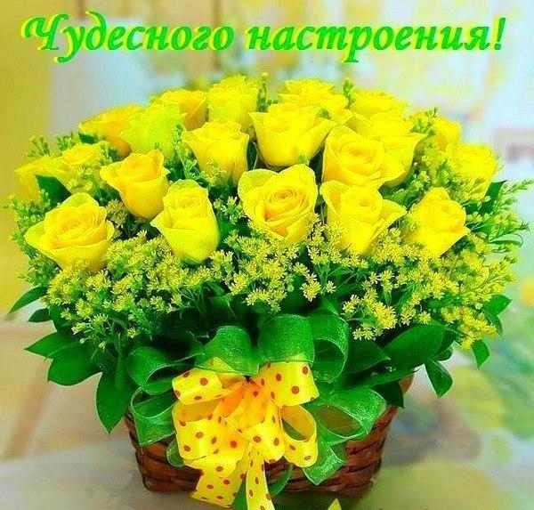 http://cs627416.vk.me/v627416782/93c/pkAi7ElrGLE.jpg