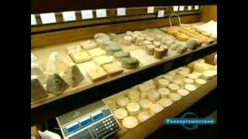 Вкус сыра. Нормандский Камамбер Франция