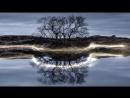 Законы Гармонии Вселенной (2013) (фильм Василия Тушкина, и Алексея Михалюка) [HD, 720p]