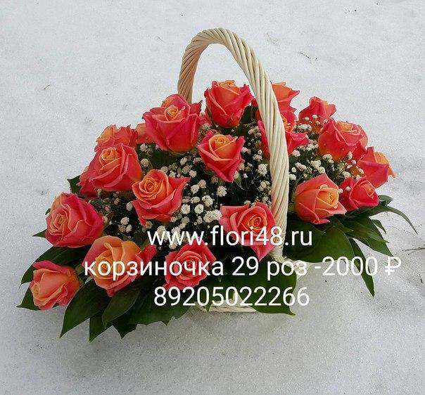 yXNn4Vb5K0Q.jpg