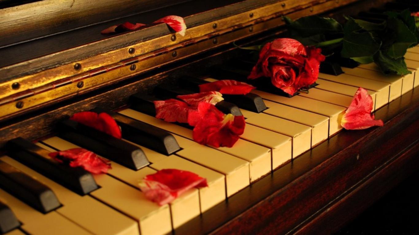 Смотреть dream note 1 фотография