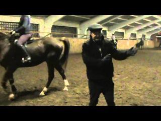 Выездка лошади видео уроки. Поворот на переду, остановки.