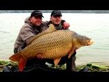 Карп на 47кг # Самая Большая в мире пойманная Рыба