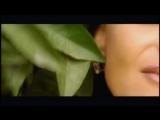 Наталья Лагода - Врут мне твои глаза (1996)