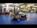 Butterfly Guard Attack Combo Black Belt Firas Zahabi