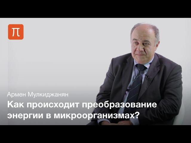 Биоэнергетические механизмы и их эволюция • Армен Мулкиджанян