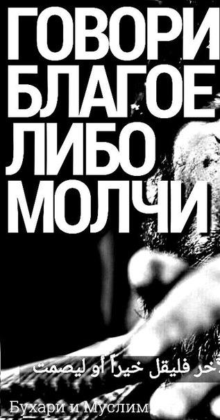 Фото №371034673 со страницы Гамзата Кудбудинoва