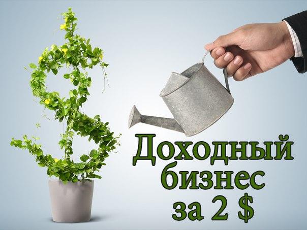 http://cs627419.vk.me/v627419054/48fb6/9NGm0ClVZYU.jpg