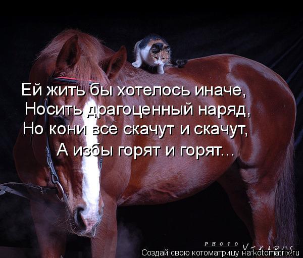 http://cs627419.vk.me/v627419968/1fbae/sLkZpdOCa3g.jpg