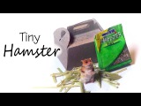 Miniature Hamster Tutorial - Polymer Clay &amp Paper