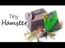 Miniature Hamster Tutorial Polymer Clay Paper