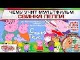 Чему учит мультфильм Свинка Пеппа?