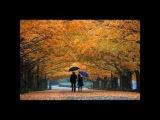 Осенний свет W. Drojecka (Веслава Дроецка)