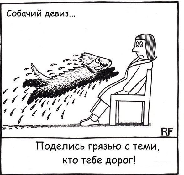 ВЕСТ-ХАЙЛЕНД-ВАЙТ-ТЕРЬЕР