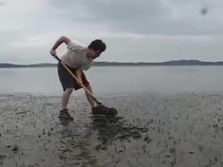 Ловля огромного моллюска