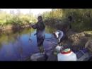 Видео о рыбалке в новом уренгое