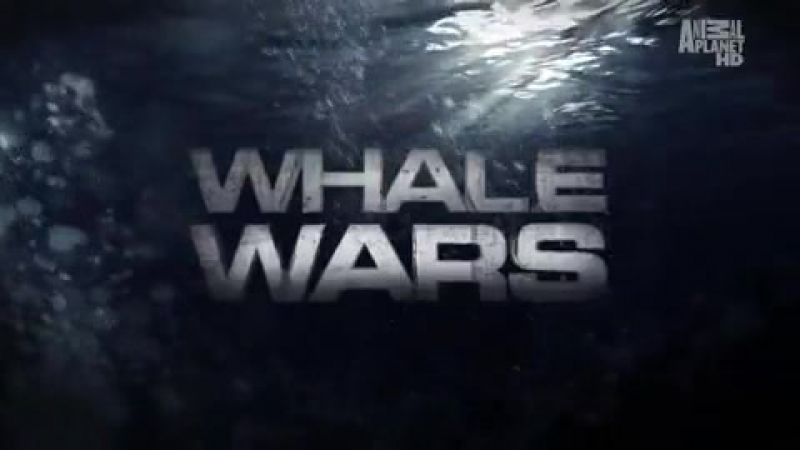 Whale Wars - Opening