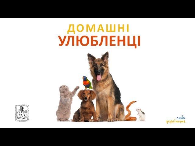 🐕 Домашні улюбленці. Назви тварин українською. Для дітей від 1 року
