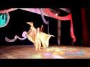 Красота, пластика, экзотика и завораживающие танцы Ферюзы в Кингисеппе. KINGISEPP