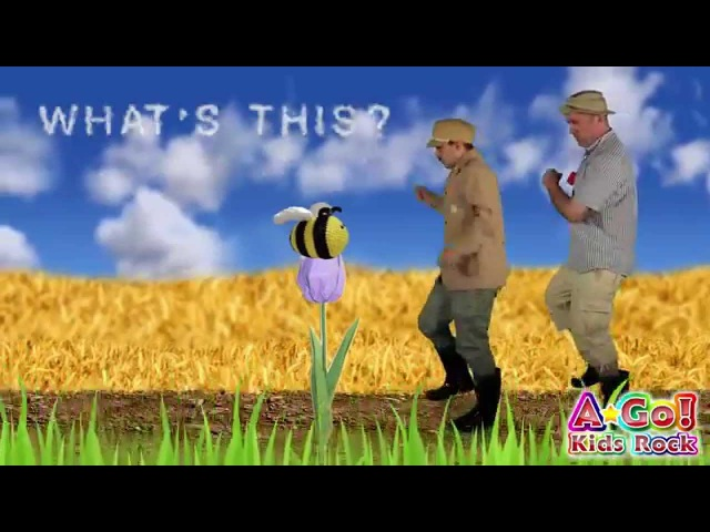 What's This? What's That? | English Kids Songs | BINGOBONGO Learning